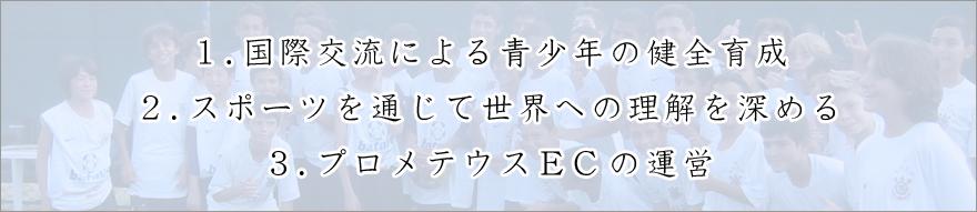 国際スポーツ文化交流協会の活動内容